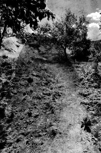 dirt-path-delik.png
