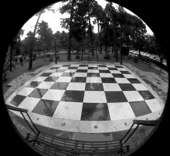 Human Chess Board