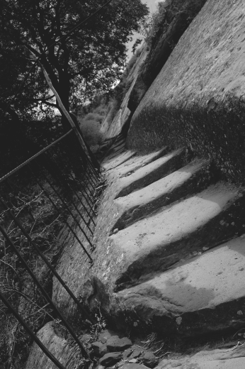 Supposedly Steps