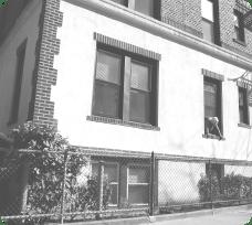 Woman in the Windowcurve