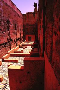 Badi Palace Between the Walls 286